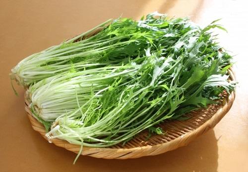 水菜の栄養