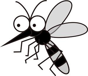 蚊がいなくなるスプレーの評価